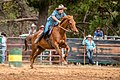 Boddington Rodeo 2015 (128246485).jpeg