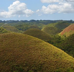 Evenly formed hills turn a rich brown in the p...