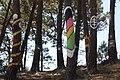 Bosque de Hirosima 02-03.jpg