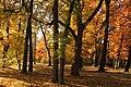 Botanic Garden - Cluj-Napoca (4115111363).jpg