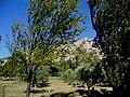 Bouches-Du-Rhone Les Alpilles Rochers D'Entreconque 20102011Bouches-Du-Rhone Route Vers Aureille 20102011 - panoramio.jpg