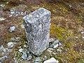 Boundary Marker - geograph.org.uk - 1286399.jpg