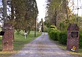 Boxwoods driveway.jpg