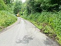 Braceland Road 2 - geograph.org.uk - 1441586.jpg