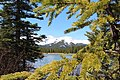 Bragg Creek road trip (8846067666).jpg
