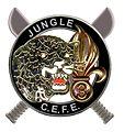 Brevet-jungle.jpg