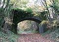 Bridge over the Marriott's Way - geograph.org.uk - 1042912.jpg
