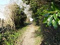 Bridleway from Gorcombe Farm to Manor Farm - geograph.org.uk - 329085.jpg