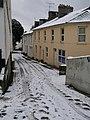 Brunswick Terrace, Torre - geograph.org.uk - 1660466.jpg