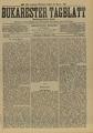Bukarester Tagblatt 1895-11-02, nr. 246.pdf