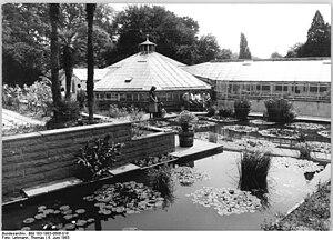 Image of Botanische Garten der Martin-Luther-Universität Halle-Wittenberg: http://dbpedia.org/resource/Botanische_Garten_der_Martin-Luther-Universität_Halle-Wittenberg