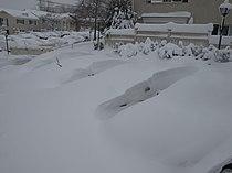 Buried cars (4335642662).jpg