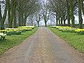 Burrow Farm driveway - geograph.org.uk - 722102.jpg