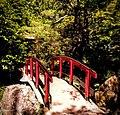 Butchart Gardens - Victoria, British Columbia, Canada (29211779422).jpg