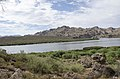 Butcher Jones Trail to Pinter's Point Loop, Tonto National Park, Saguaro Lake, Ft. McDowell, AZ - panoramio (93).jpg