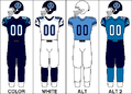 CFL Jersey TOR2008.png