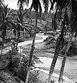 COLLECTIE TROPENMUSEUM Een door een dal slingerende rivier TMnr 10018468.jpg
