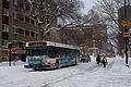 CTA 147 bus 20110202.jpg
