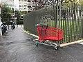 Caddie perdu dans la rue à Courbevoie (Hauts-de-Seine, France).JPG