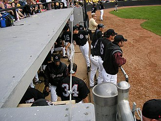 Calgary Vipers - Calgary Vipers players in the dugout