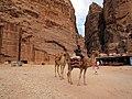 Camel in Petra, Jordan - October 2009 (4053821964).jpg