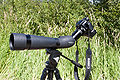 Camera and telescopic lens on a tripod -onithology-7July2007.jpg
