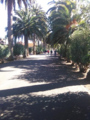Camino Largo1.png