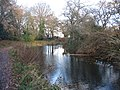 Canal in late autumn. - geograph.org.uk - 626274.jpg