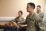 Canine Ultrasound in Afghanistan 141008-N-JY715-413.jpg