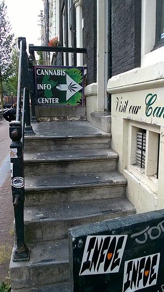 В ближайшее время Амстердам перестанет быть мировой столицей наркотуризма