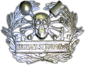 Cap badge of the Polish Storm Detachment during Silesian Uprisings.PNG