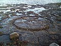 Capstan Base Fife Ness Harbour - geograph.org.uk - 342130.jpg