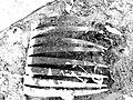 Car eyelash 2 (14484944032).jpg