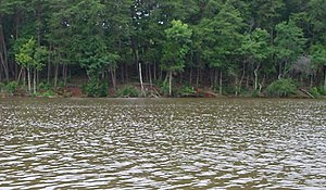Catawba River - On the Catawba River