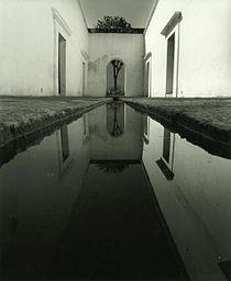 Centro-fotografico-in-oaxaca-founded-by-toledo.jpg