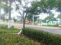 Centro de Goianésia 02.jpg