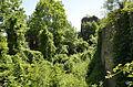 Cetatea Bologa 2.jpg
