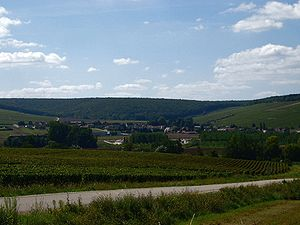 Chablis wine - View of Chablis, Burgundy, from the north, vineyard of Vaulorent in the foreground