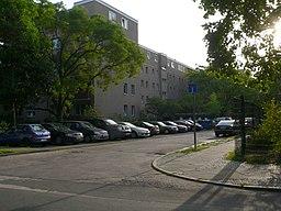 Schwambzeile in Berlin