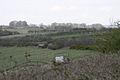Chilcombe Down - geograph.org.uk - 381682.jpg