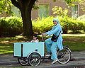 Child in freight bicycle.jpg