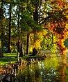 """Cincinnati - Spring Grove Cemetery & Arboretum """"Cypress Tree Needles & Flares"""" (5998465513).jpg"""