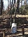 Cippo nel parco di Lignano - panoramio.jpg