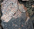 Clast-rich impact pseudotachylite (Sudbury Breccia, Paleoproterozoic, 1.85 Ga; Windy Lake Northwest roadcut, Sudbury Impact Structure, Ontario, Canada) 28 (47739562961).jpg