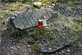 Cmentarz Zydowski w Radosci 02.jpg