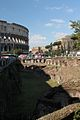 Coliseo 2013 011.jpg