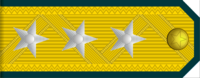 Colonel General rank insignia (North Korean police).png