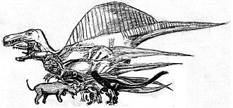 Andrewsarchus - Size comparison of Andrewsarchus (orange) against other carnivores