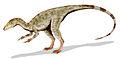 Compsognathus BW.jpg