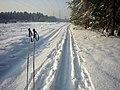 Contractual trail - umowny szlak wędrowny. - panoramio.jpg